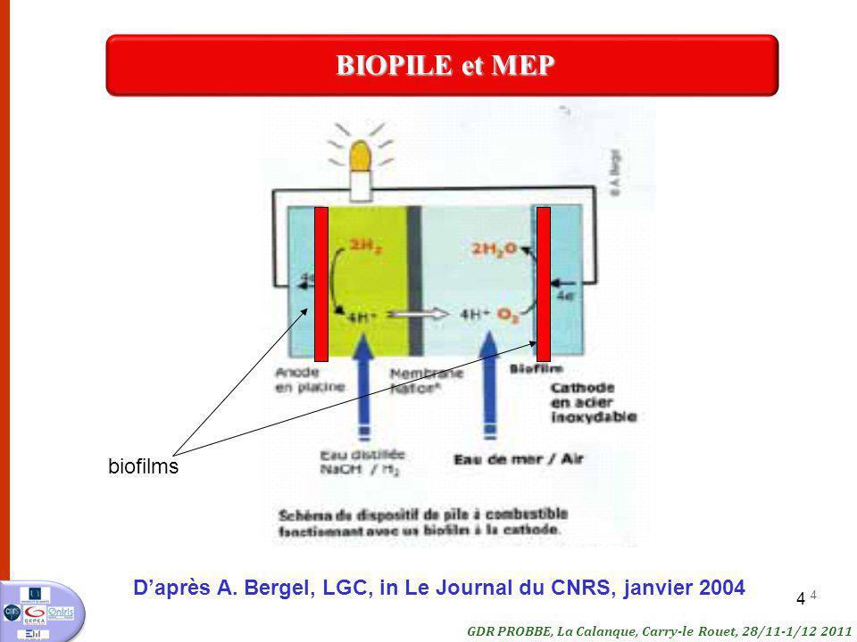 BIOPILE et MEP biofilms