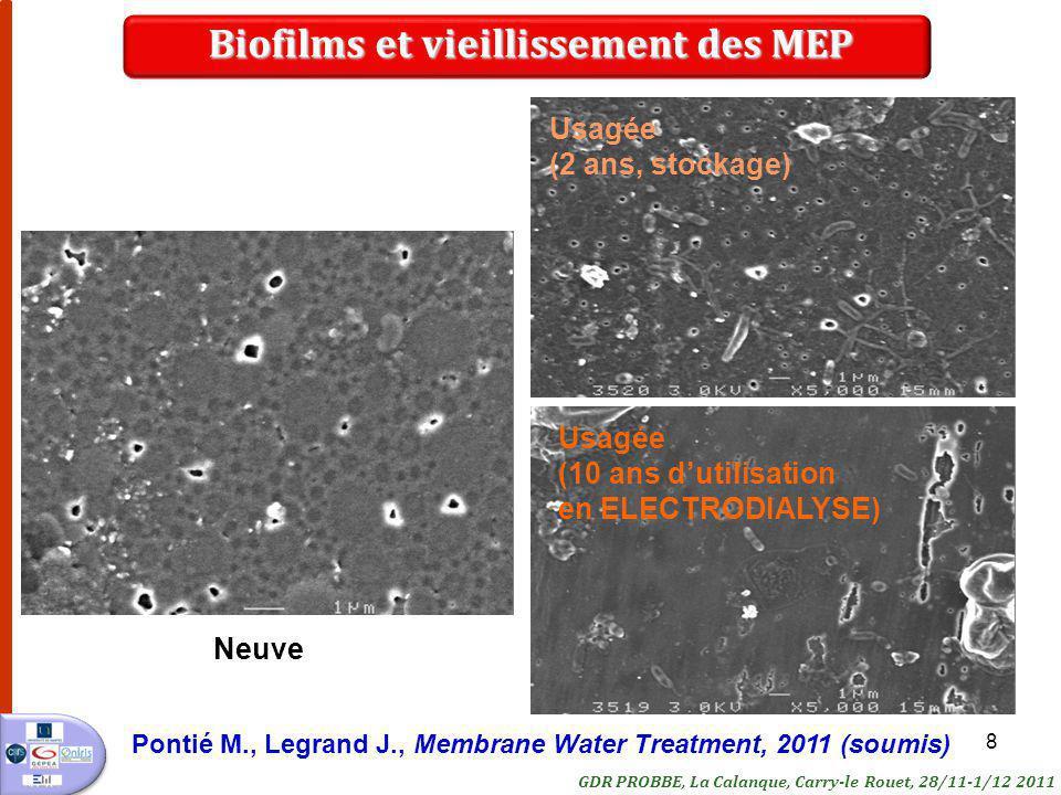 Biofilms et vieillissement des MEP