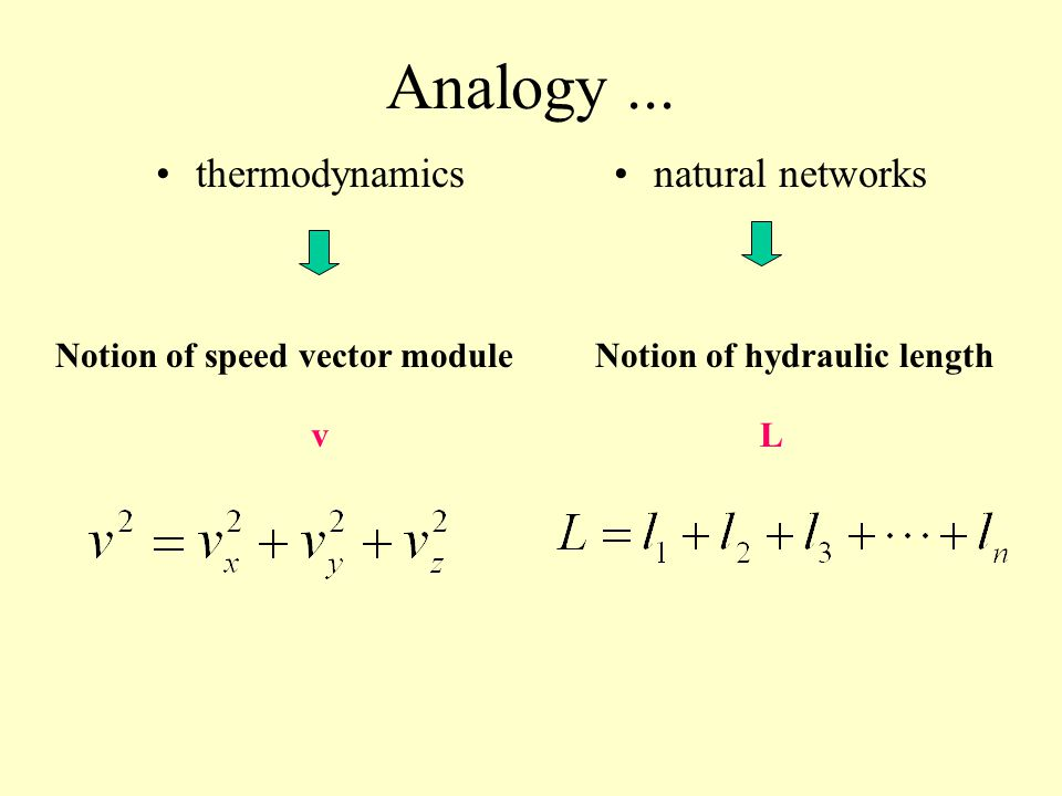 Notion of speed vector module Notion of hydraulic length