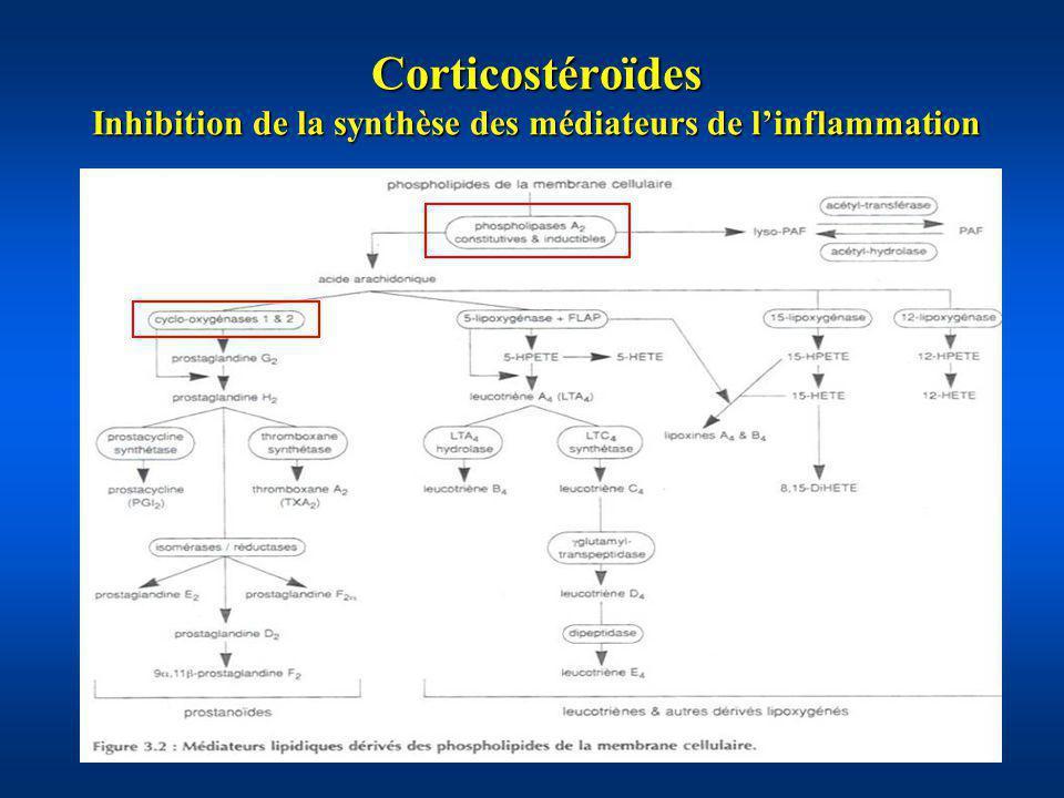 Corticostéroïdes Inhibition de la synthèse des médiateurs de l'inflammation
