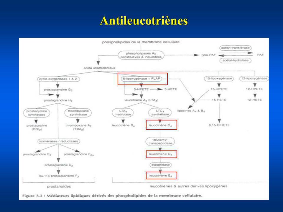 Antileucotriènes