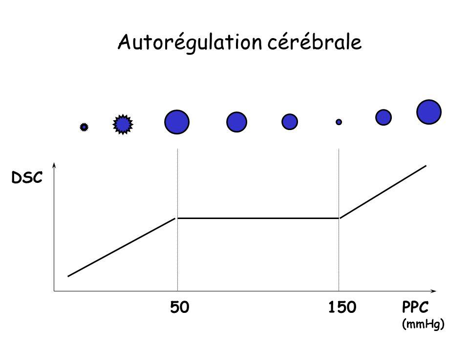 Autorégulation cérébrale
