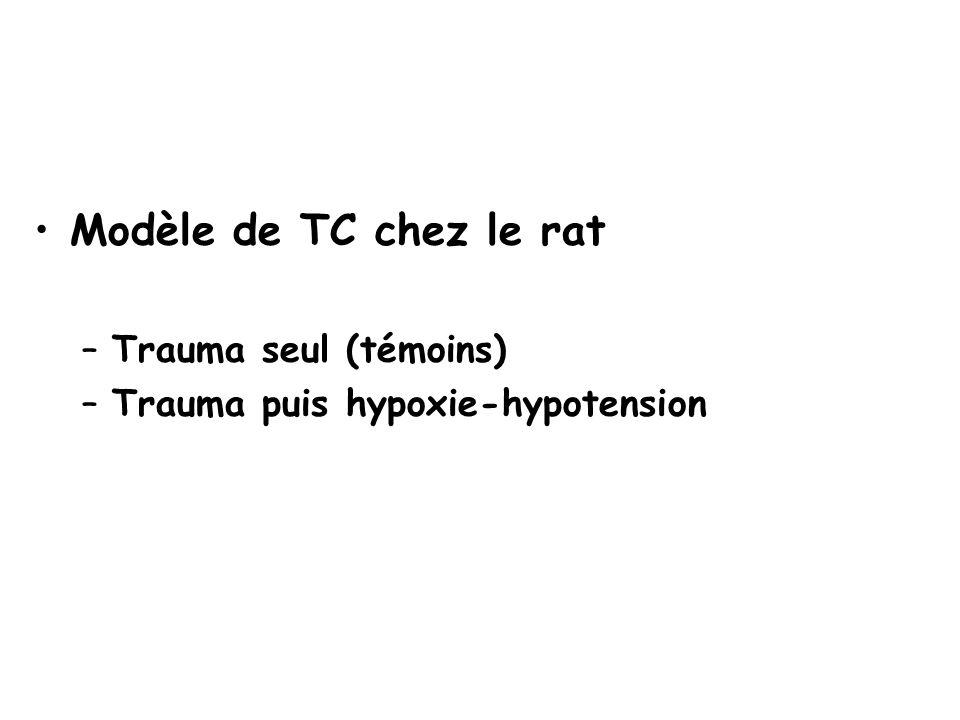 Modèle de TC chez le rat Trauma seul (témoins)