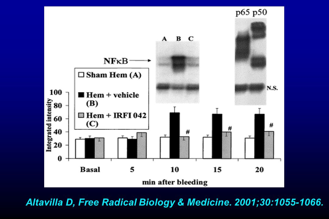 Altavilla D, Free Radical Biology & Medicine. 2001;30:1055-1066.