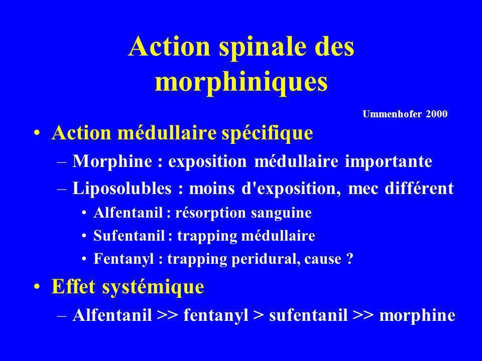 Action spinale des morphiniques