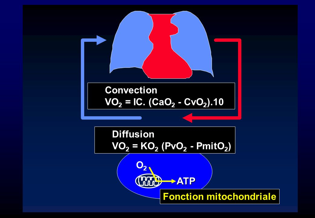 Convection VO2 = IC. (CaO2 - CvO2).10. Diffusion.