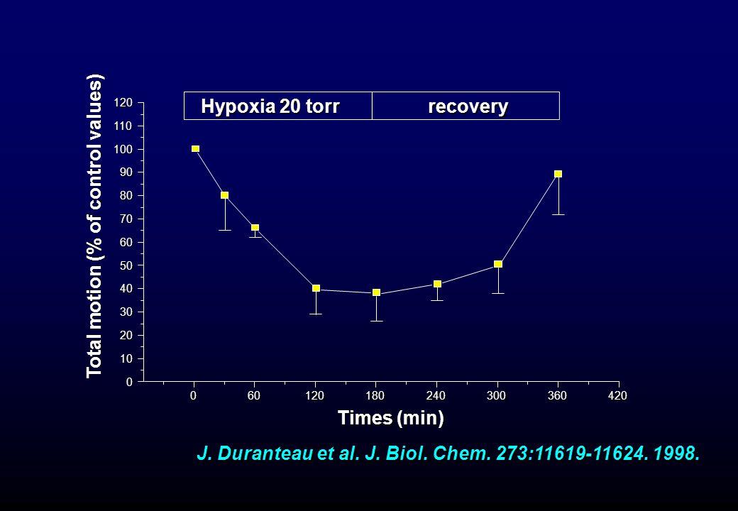 J. Duranteau et al. J. Biol. Chem. 273:11619-11624. 1998.