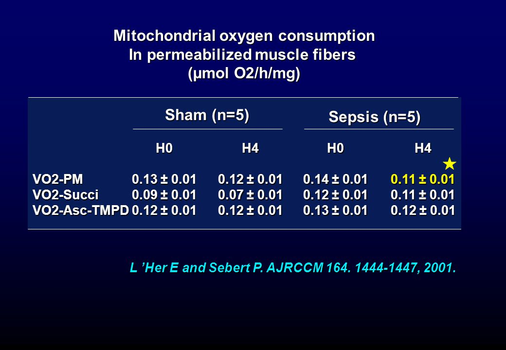 Mitochondrial oxygen consumption In permeabilized muscle fibers