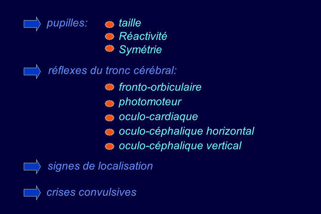 réflexes du tronc cérébral: fronto-orbiculaire photomoteur