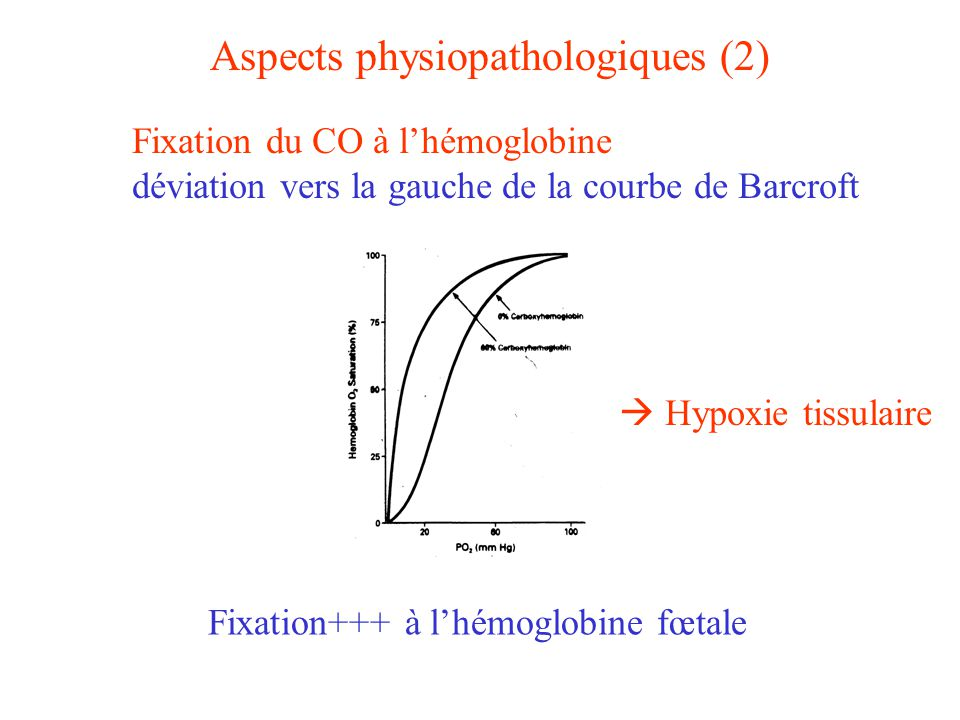 Aspects physiopathologiques (2)