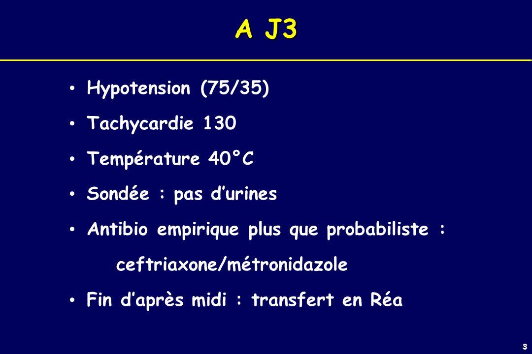 A J3 Hypotension (75/35) Tachycardie 130 Température 40°C