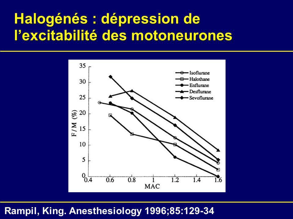 Halogénés : dépression de l'excitabilité des motoneurones