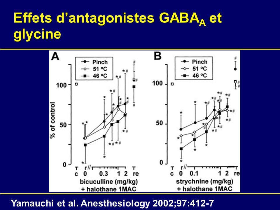 Effets d'antagonistes GABAA et glycine
