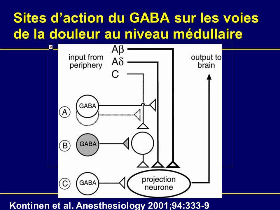 Sites d'action du GABA sur les voies de la douleur au niveau médullaire