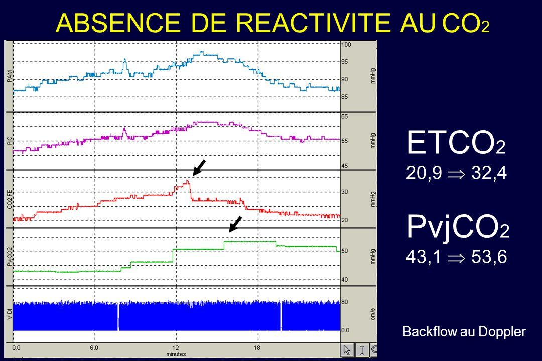 ABSENCE DE REACTIVITE AU CO2