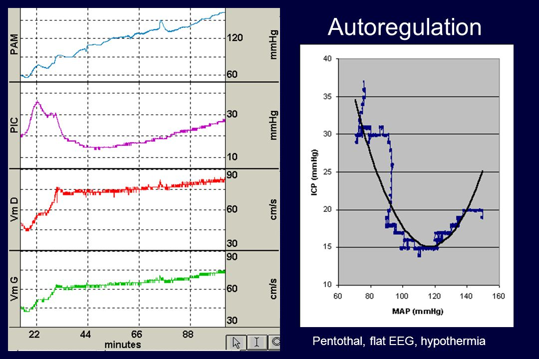 Autoregulation BRETEAU SAISY Pentothal, flat EEG, hypothermia