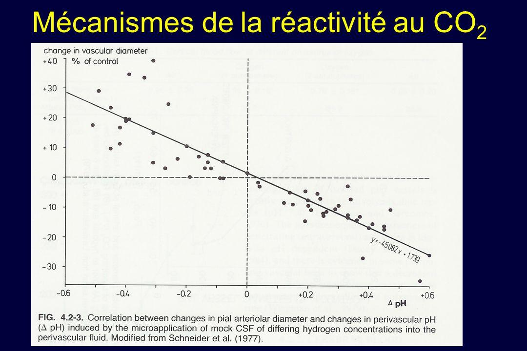 Mécanismes de la réactivité au CO2