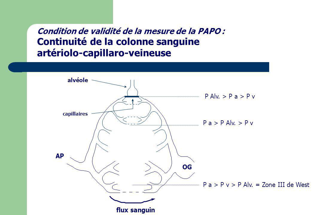 Continuité de la colonne sanguine artériolo-capillaro-veineuse