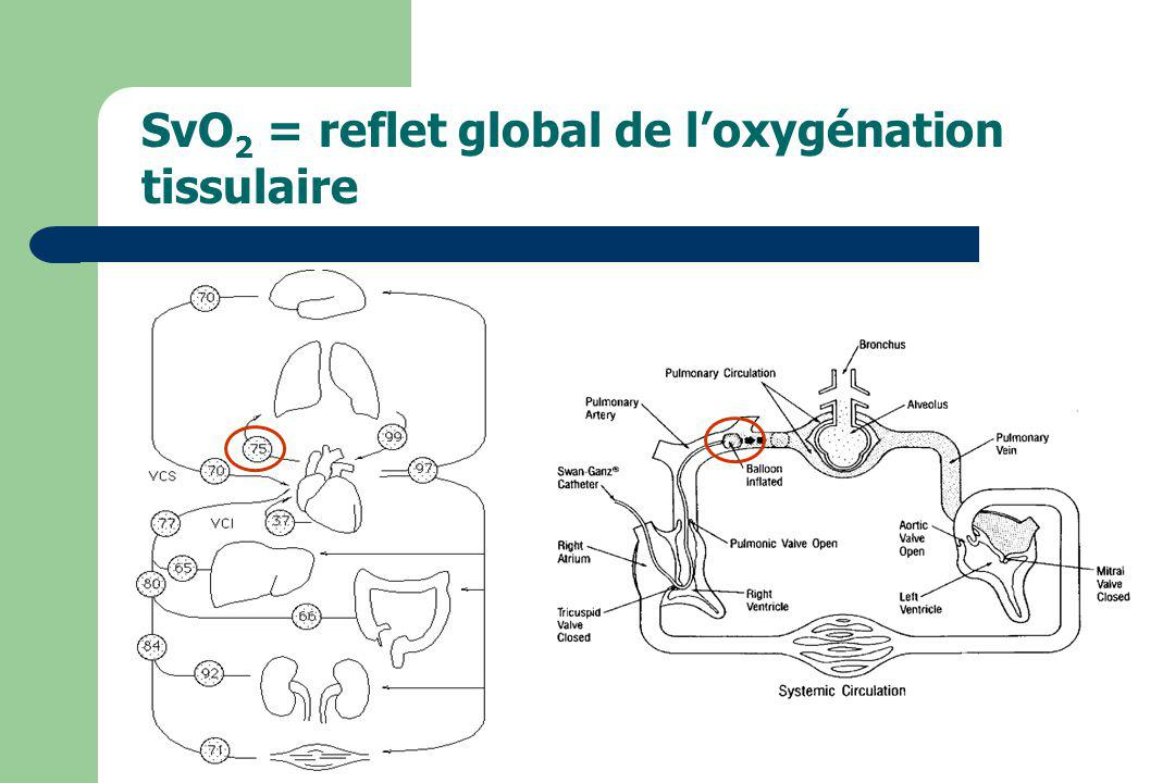 SvO2 = reflet global de l'oxygénation tissulaire