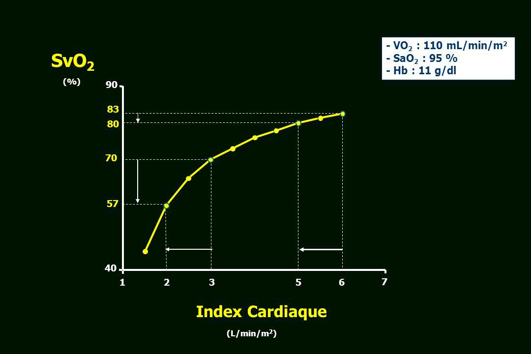 SvO2 Index Cardiaque - VO2 : 110 mL/min/m2 - SaO2 : 95 %