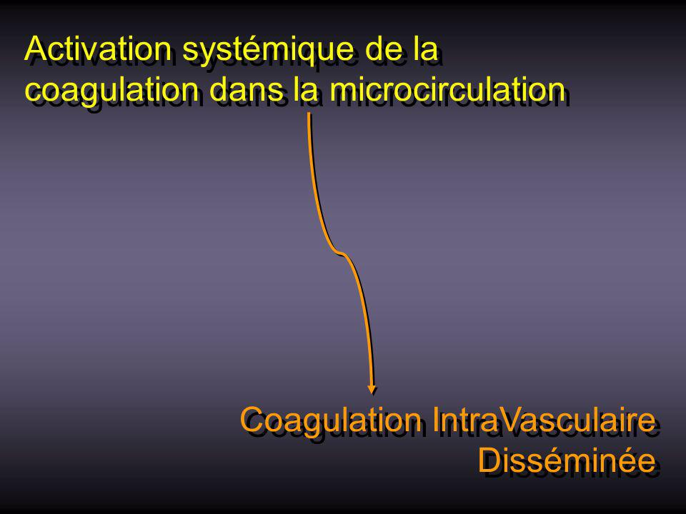 Activation systémique de la coagulation dans la microcirculation