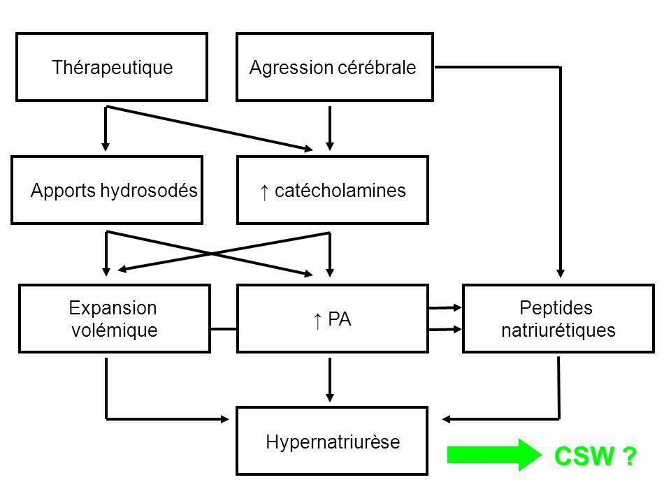 CSW Agression cérébrale Thérapeutique Peptides natriurétiques
