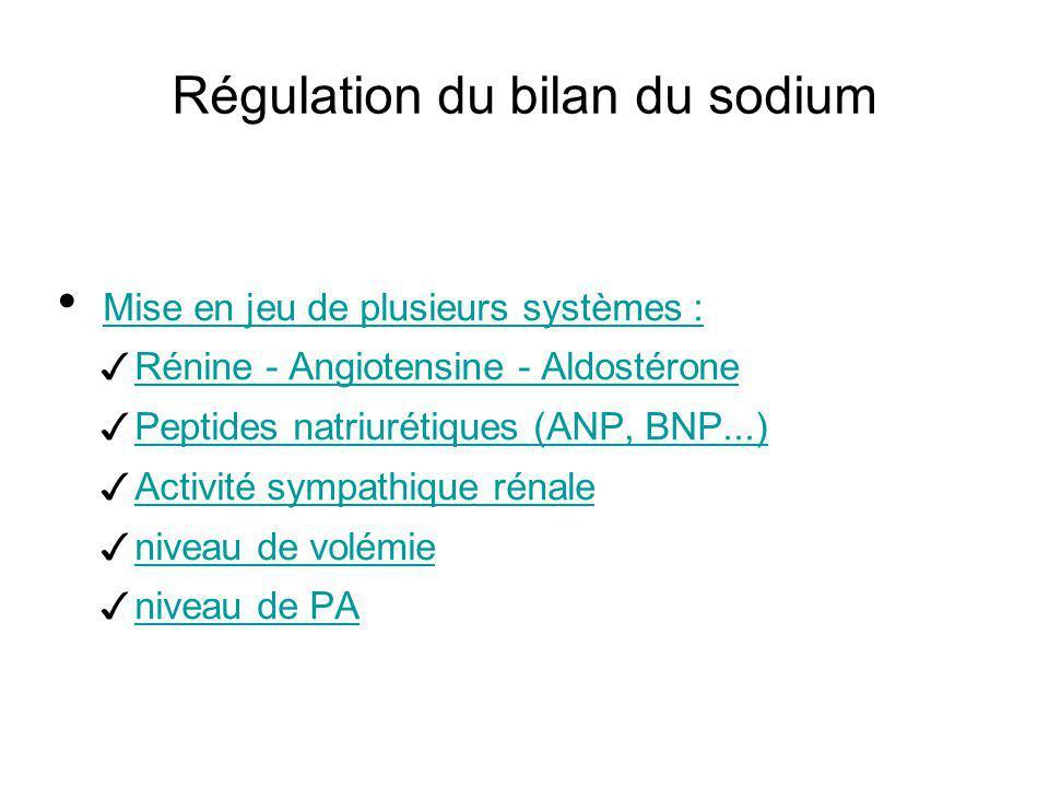 Régulation du bilan du sodium