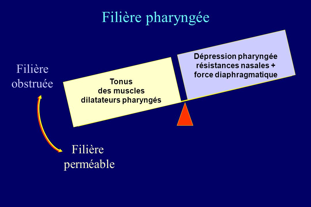 résistances nasales + force diaphragmatique dilatateurs pharyngés