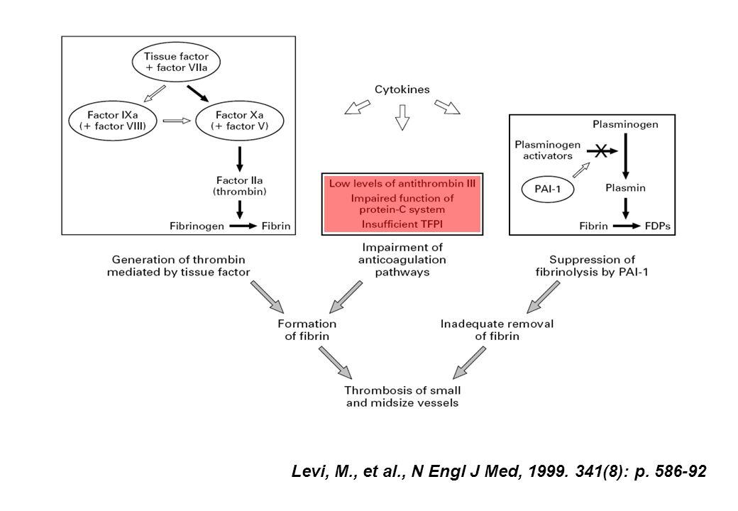 Levi, M., et al., N Engl J Med, 1999. 341(8): p. 586-92