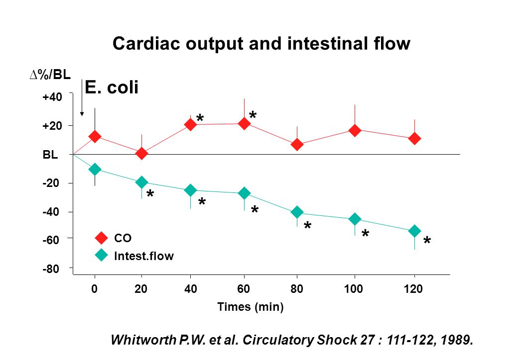 * * * * * * * * Cardiac output and intestinal flow E. coli ∆%/BL