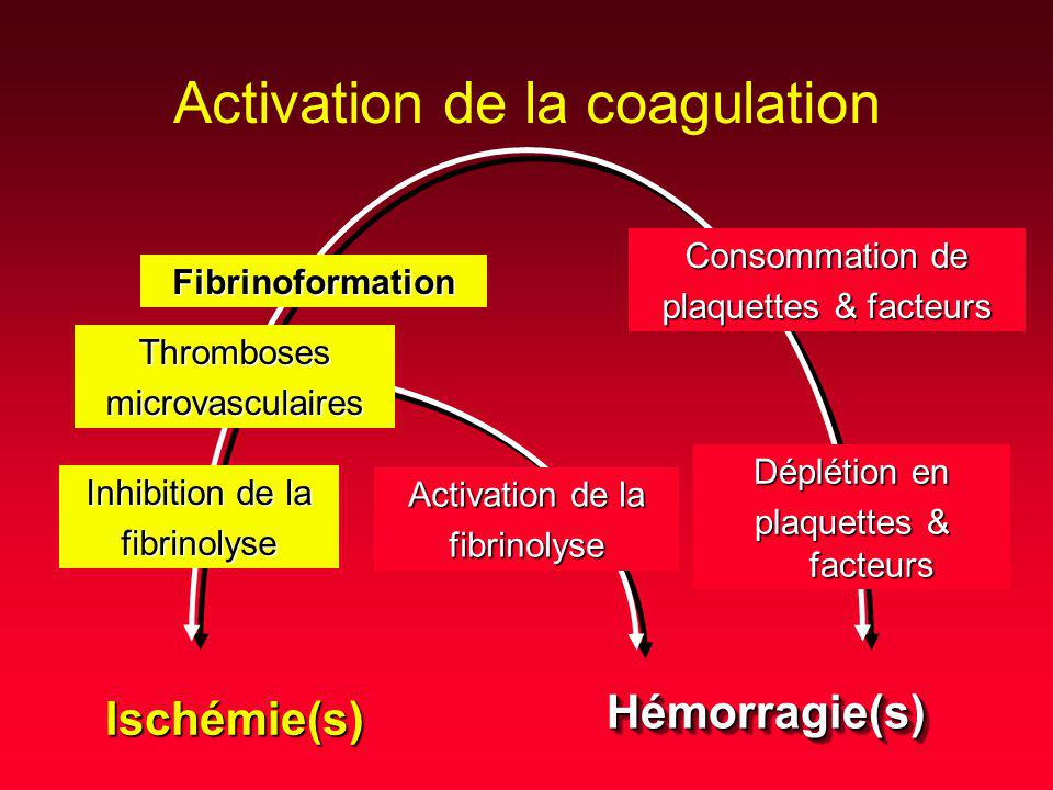 Activation de la coagulation