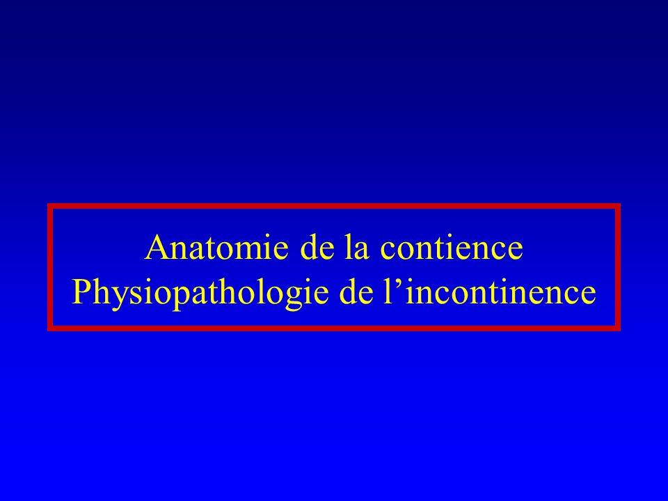 Anatomie de la contience Physiopathologie de l'incontinence