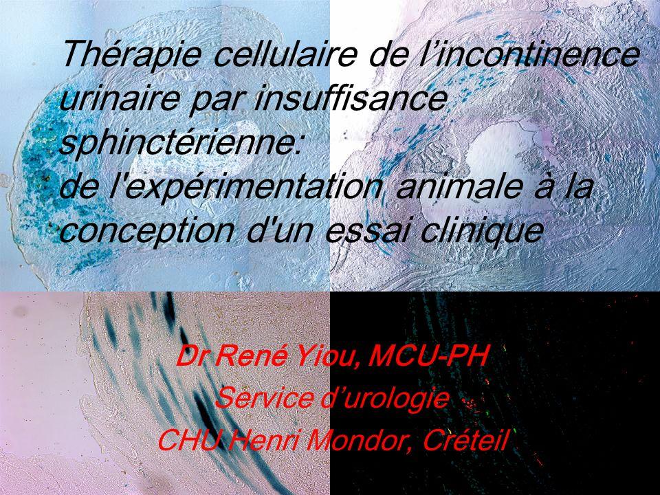 CHU Henri Mondor, Créteil