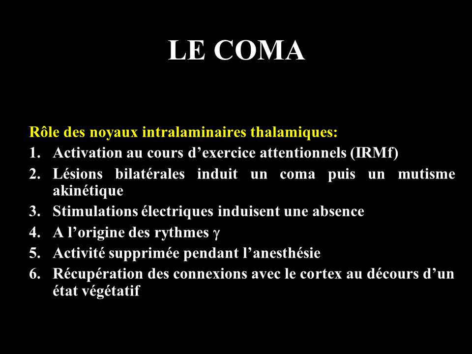 LE COMA Rôle des noyaux intralaminaires thalamiques: