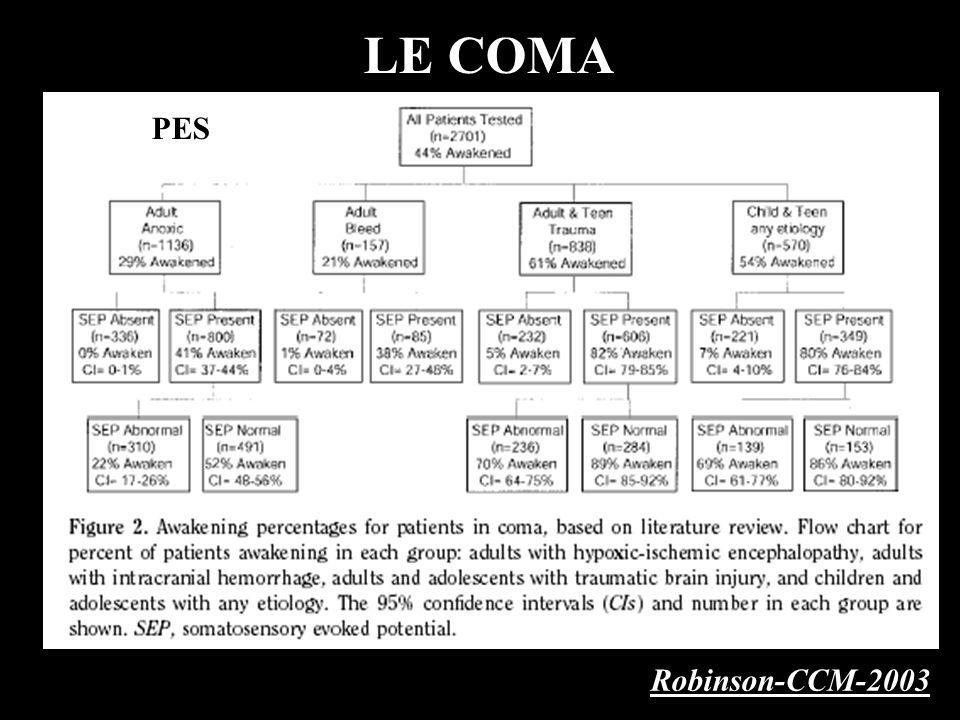 LE COMA PES Robinson-CCM-2003