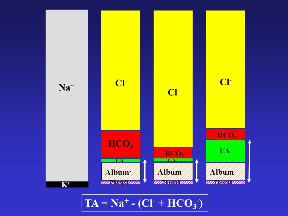 TA = Na+ - (Cl- + HCO3-) Cl- Cl- Na+ Cl- HCO3- Album- Album- Album-