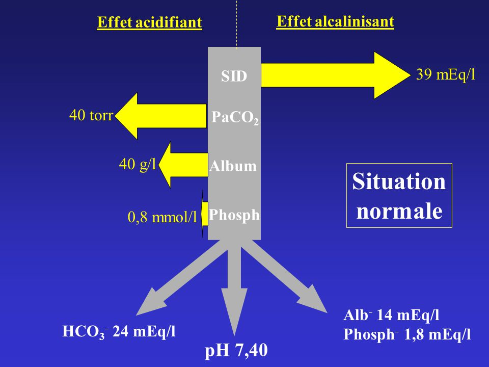 Situation normale pH 7,40 Effet acidifiant Effet alcalinisant 39 mEq/l