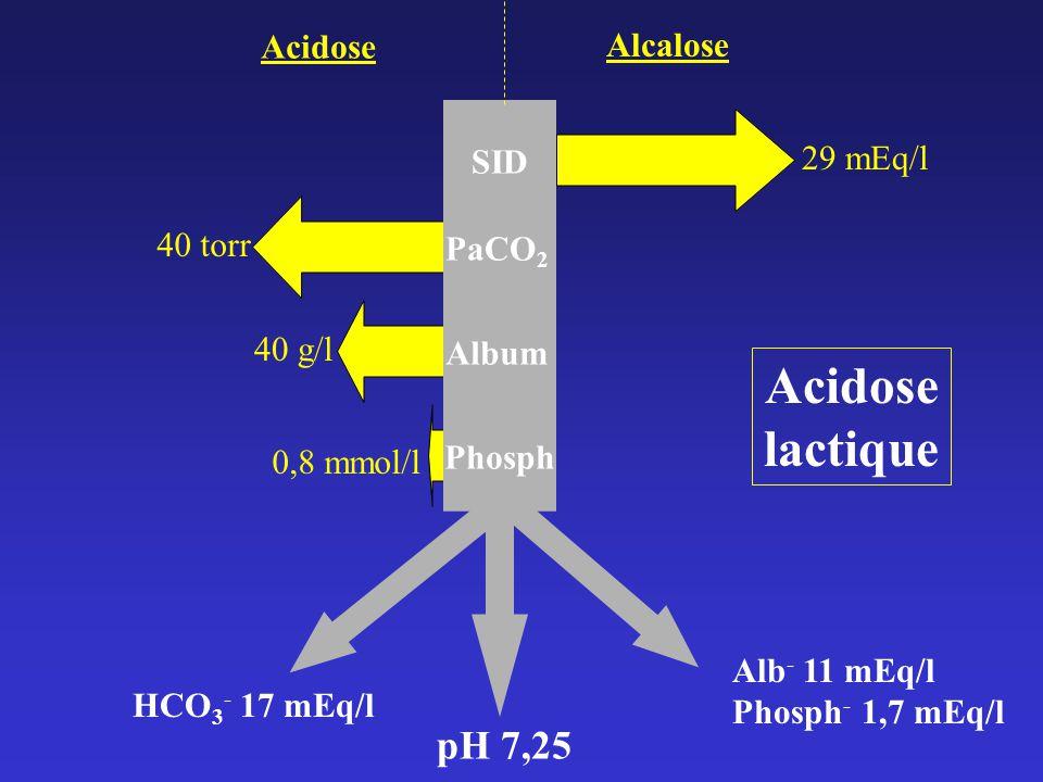 Acidose lactique pH 7,25 Acidose Alcalose 29 mEq/l SID 40 torr PaCO2