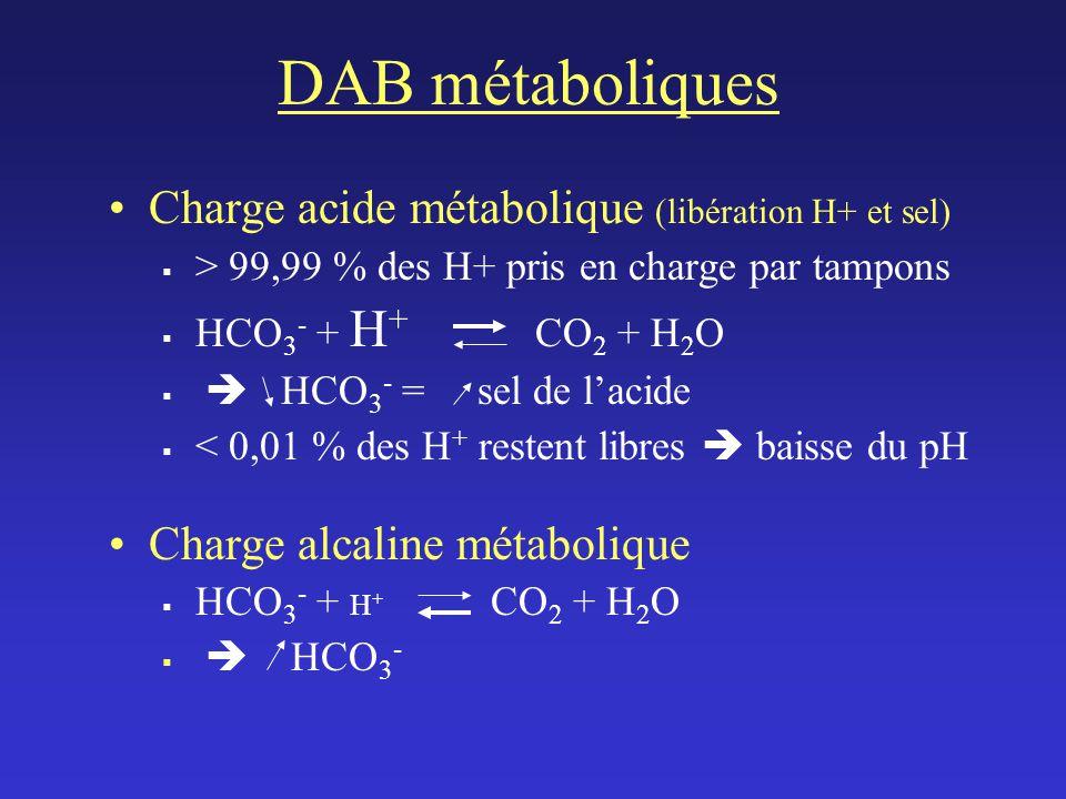 DAB métaboliques Charge acide métabolique (libération H+ et sel)