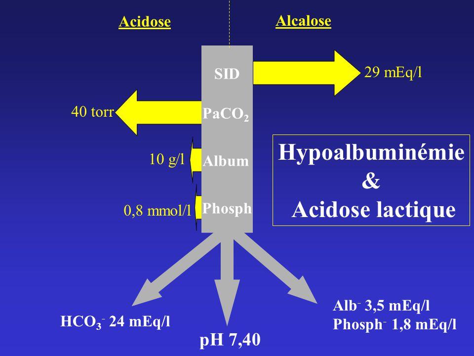 Hypoalbuminémie & Acidose lactique