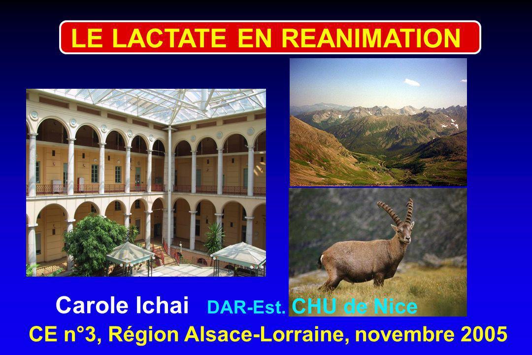 CE n°3, Région Alsace-Lorraine, novembre 2005