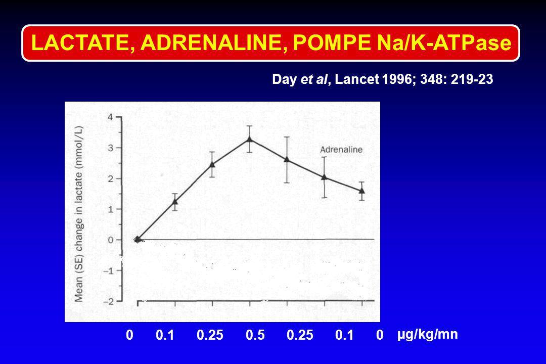 LACTATE, ADRENALINE, POMPE Na/K-ATPase