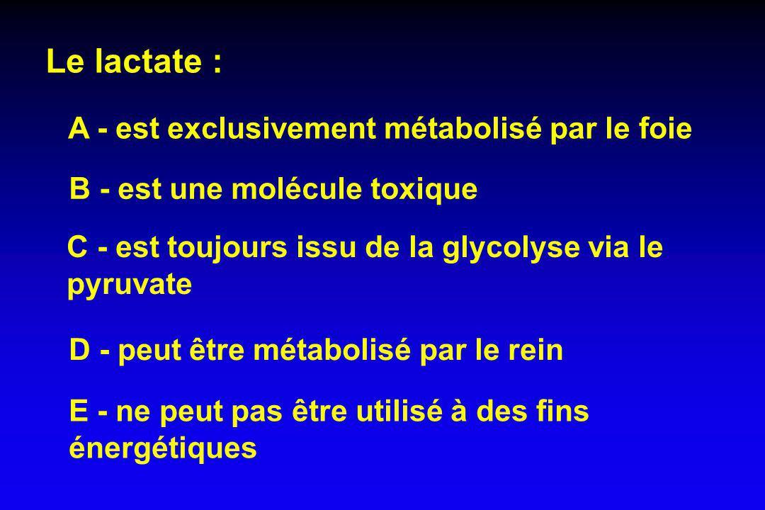 Le lactate : A - est exclusivement métabolisé par le foie