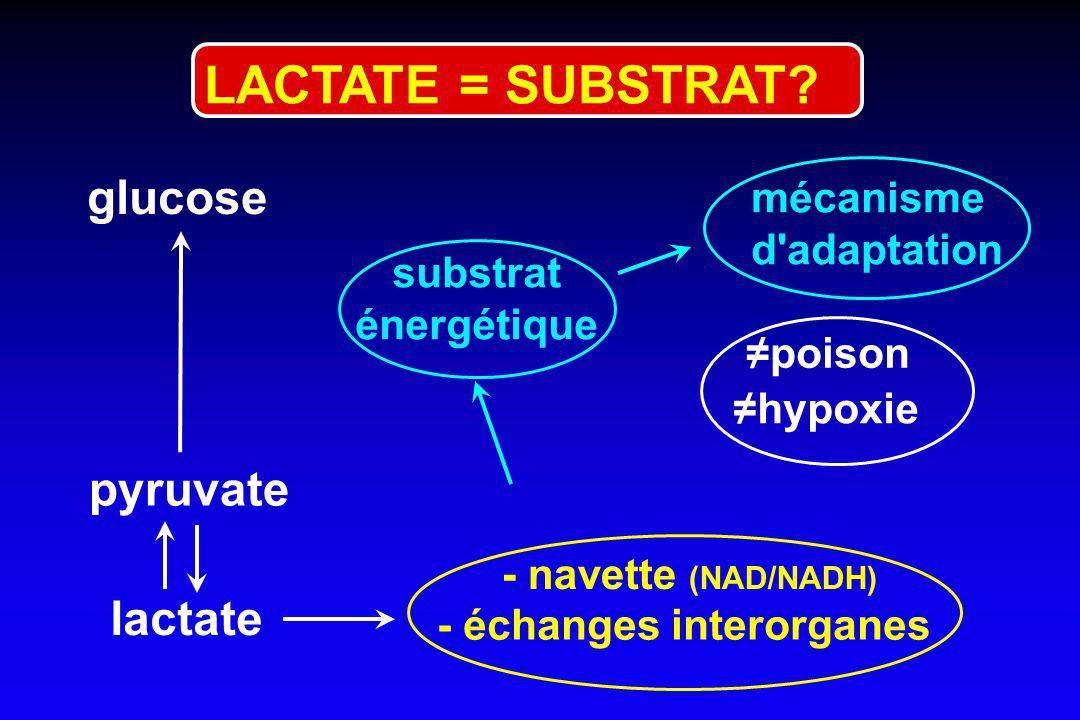 LACTATE = SUBSTRAT glucose pyruvate lactate mécanisme d adaptation