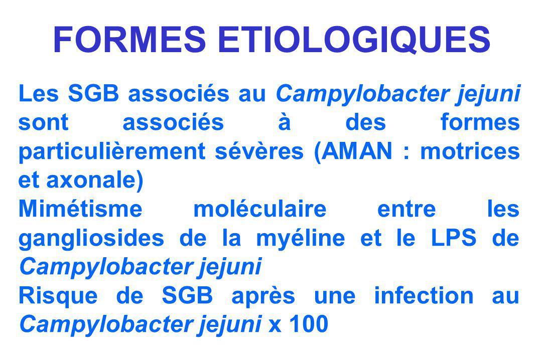 FORMES ETIOLOGIQUES Les SGB associés au Campylobacter jejuni sont associés à des formes particulièrement sévères (AMAN : motrices et axonale)