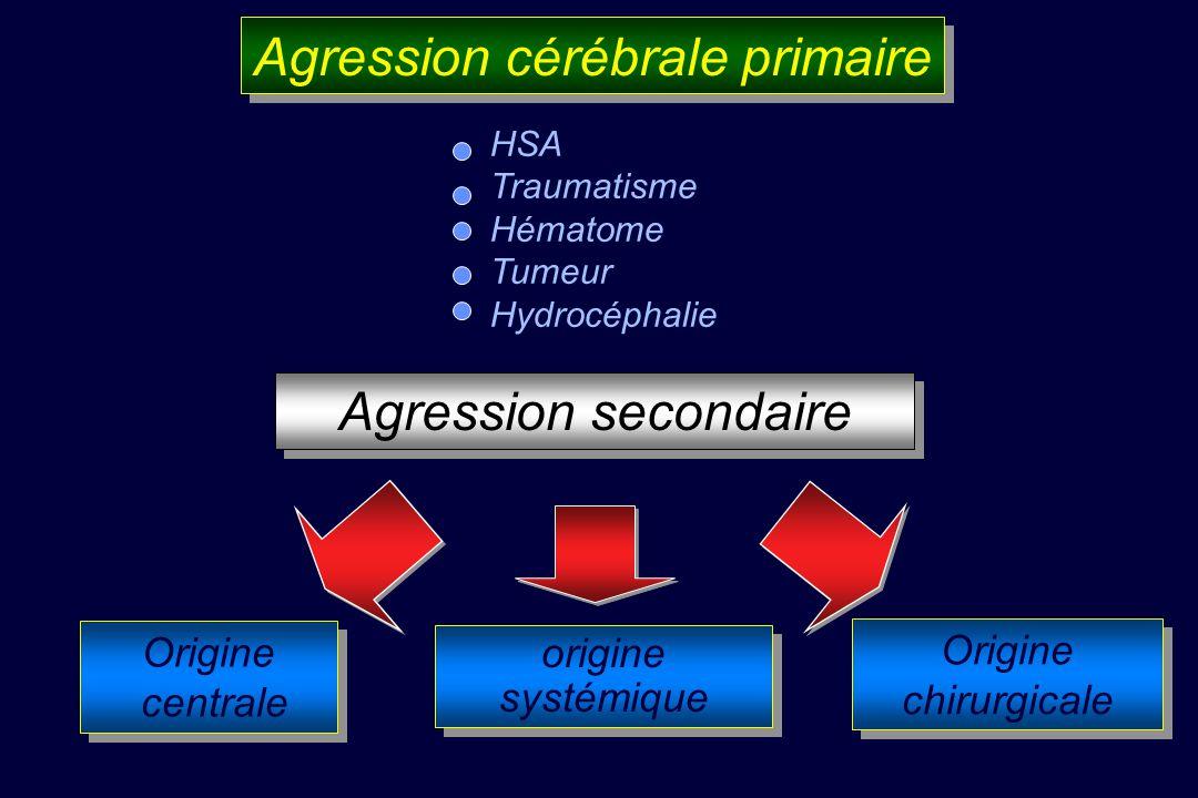Agression cérébrale primaire