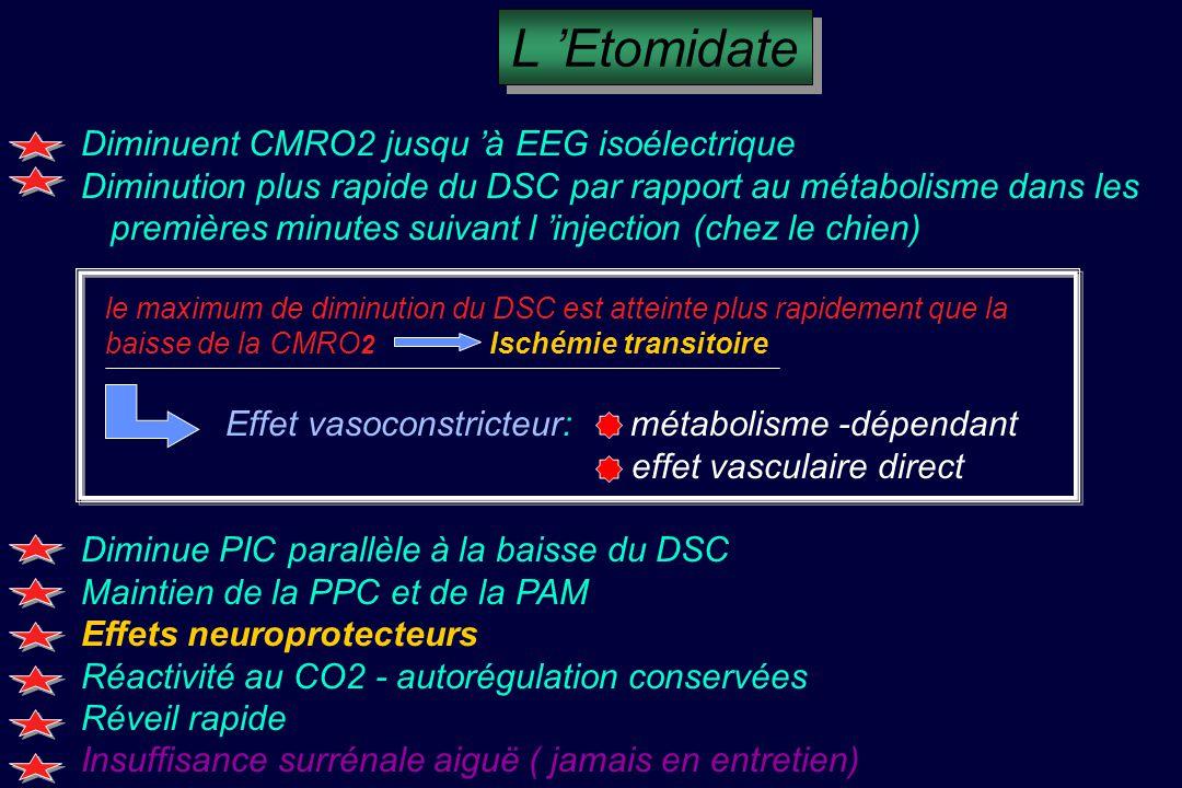 L 'Etomidate Diminuent CMRO2 jusqu 'à EEG isoélectrique