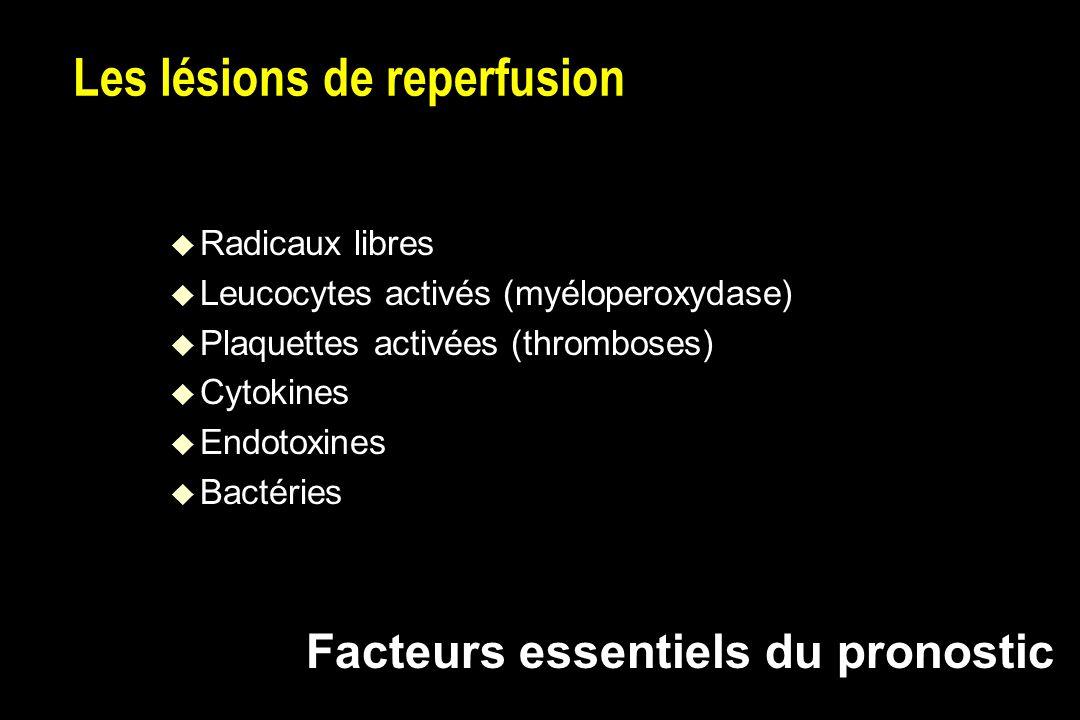 Les lésions de reperfusion