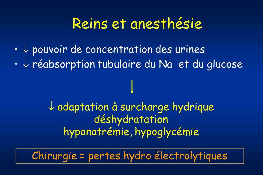 Reins et anesthésie  pouvoir de concentration des urines