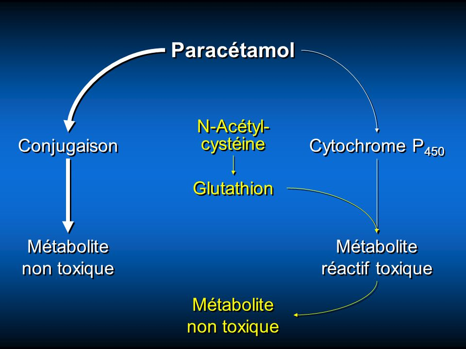 Paracétamol Glutathion N-Acétyl- cystéine Métabolite non toxique
